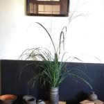 木村健一 備前焼と羅漢画展